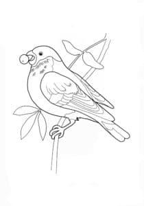 птичка с рябиной