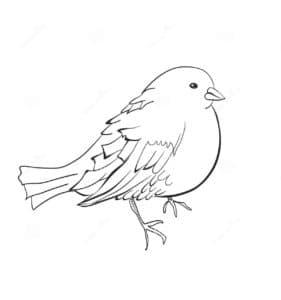 птица