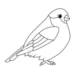 птичка снегирь