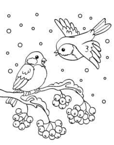 снегири и снег