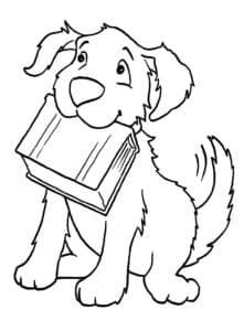 собака с книгой