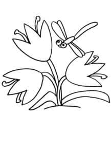 стрекоза и цветочки