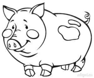детская раскраска свинья
