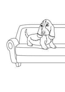 такса на диване