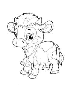 красивый теленок