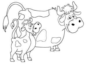раскраска для детей теленок