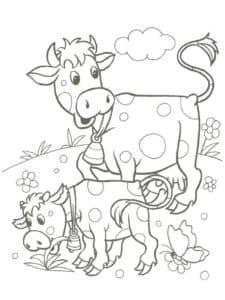 теленок кушает