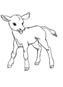 теленок раскраска детская