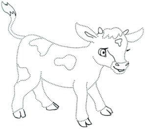 пятнистый теленок