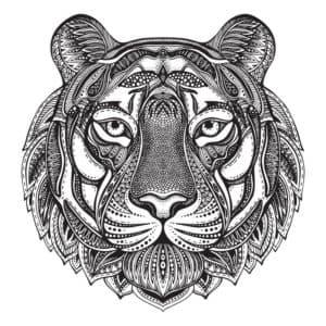 мордочка тигра антистресс