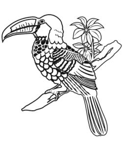 птица тукан антистресс