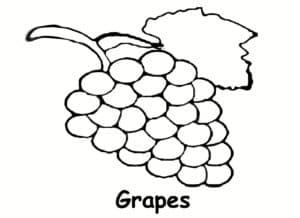 Виноград с листочком