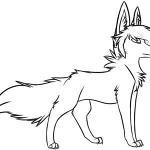 красивая волчица