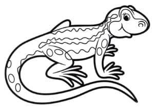 раскраска ящерица