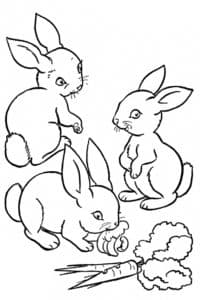 зайцы кушают капусту и морковку