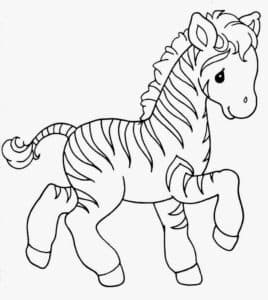 картинка зебра