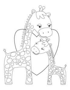 жирафы и сердечко