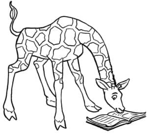 жираф читает книгу
