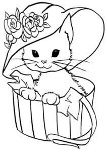 котик в шляпе