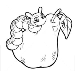 гусеница на груше