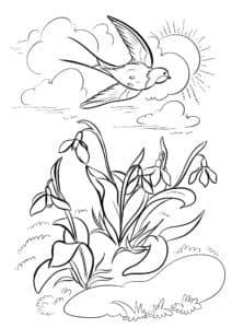 ласточка весной