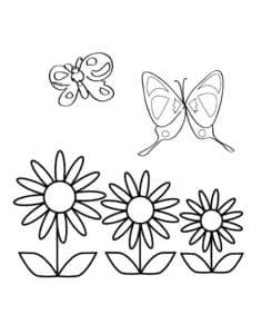 бабочки и цветы раскраска