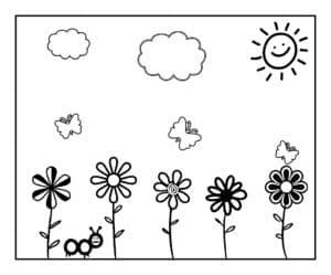 цветочки под солнцем