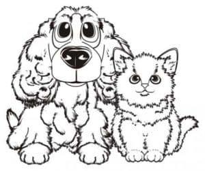 собака пудель и кошка