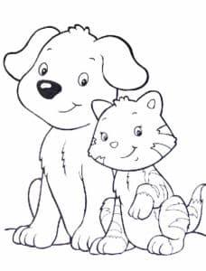 собачка и маленький кот