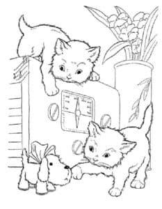 котята и щенок