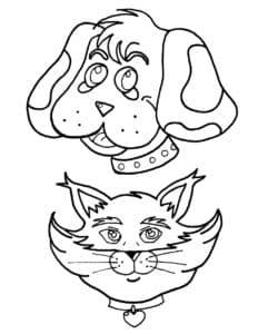 мордочки собаки и кошки