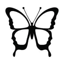 бабочка с белыми крыльями