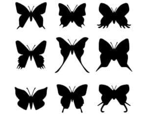 разные бабочки трафарет