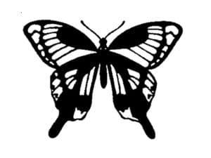 бабочка шаблон для вырезания и раскраски