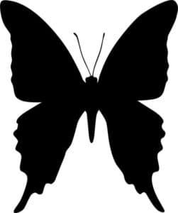 бабочка большой трафарет