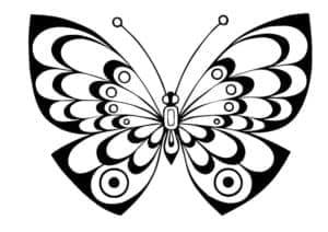бабочка с красивыми узорами шаблон