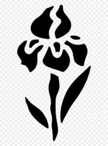 трафарет тюльпана