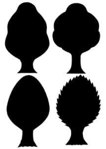 формы деревьев
