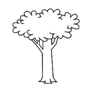 красивое дерево трафарет