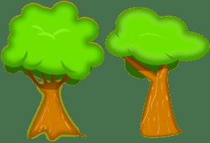 два дерева картинка