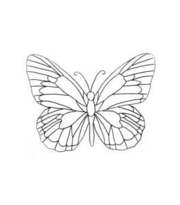 бабочка трафарет для ручки 3D