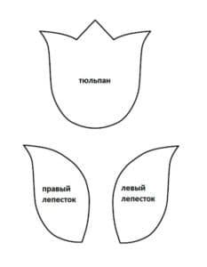 трафарет тюльпана для аппликаций