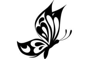бабочка трафарет