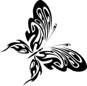 большая бабочка трафарет