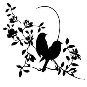 птички на ветке трафарет
