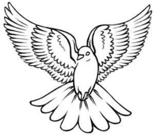 голубь с большими крыльями трафарет