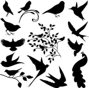 трафарет птички