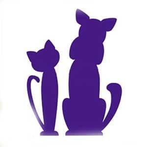 кошка и котенок трафарет