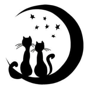 луна звезды и коты