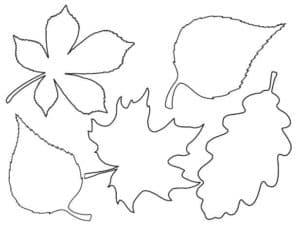 листья трафарет